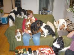 christmasday2009withsomeofmyfurfamily.jpg